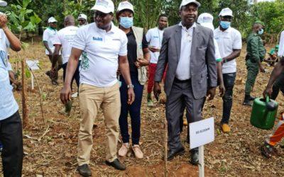 Ecoogreenday : ECOOKIM s'engage pleinement dans la préservation et la restauration des forêts