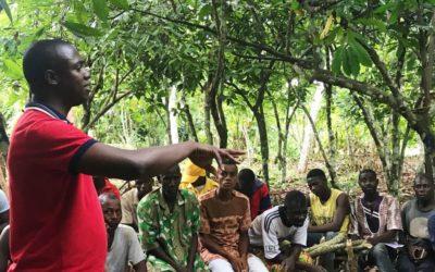 Projet d'assistance technique dans le cadre de Fairtrade Acces Fund (FAF) en partenariat avec INCOFIN IM